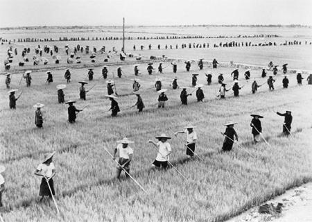 China Famine Tombstone