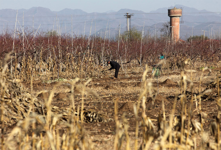 A farmer works in a field in Pinggu, on the outskirts of Beijing. Photographer: Tomohiro Ohsumi/Bloomberg