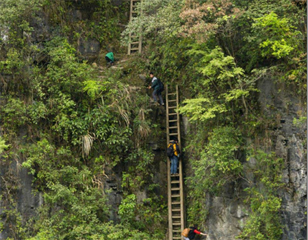 Terrifying: Children clamber down these unsecured ladders to get to school in Hunan province, China