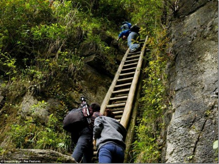 Steady as they go: Staff hold the narrow ladders steady for the next person to gingerly come down after them