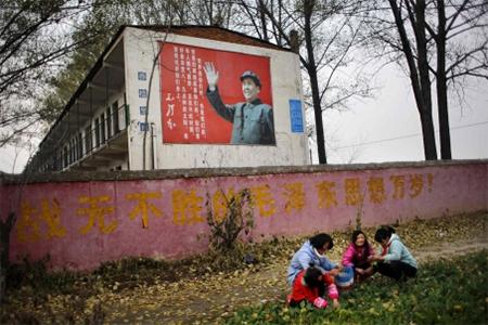 Pupils harvest vegetables under a sign featuring former leader Mao Zedong outside a school in Henan