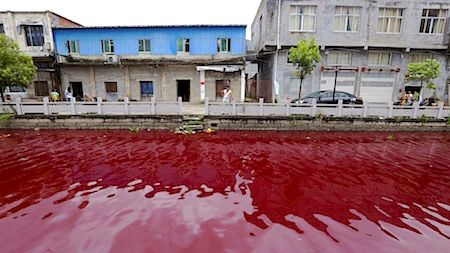 The water in a river in Xinmeizhou village in eastern China's Zhejiang province turned red overnight, baffling locals, July 25, 2014.