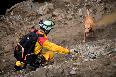 A rescue worker and his master search for survivors in the aftermath of the Aug 1, 2014 Kaohsiung gas line explosion