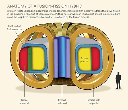 Fusion-Fission Reactor