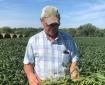 American Soybean Farmer