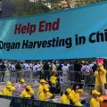 Falun Gong Protesters