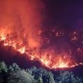 Sichuan Forest Fire