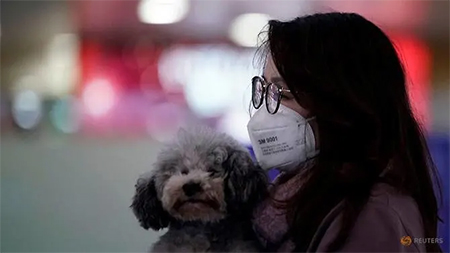 Woman With Dog at Shanghai Airport