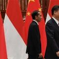 Xi Jinping and Joko Widodo