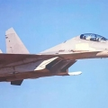 Chinese F-16 Fighter Jet